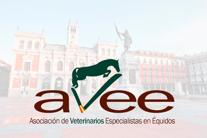IX CONGRESO AVEE. Valladolid acogerá a unos 200 colegiados de toda España