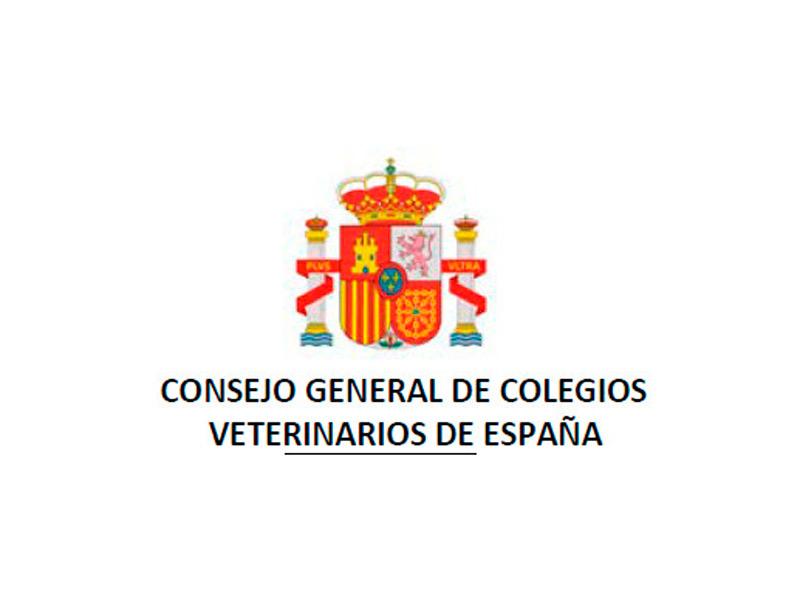 Informe PDF  elaborado por la Asesoría Fiscal y Laboral del CGCVE