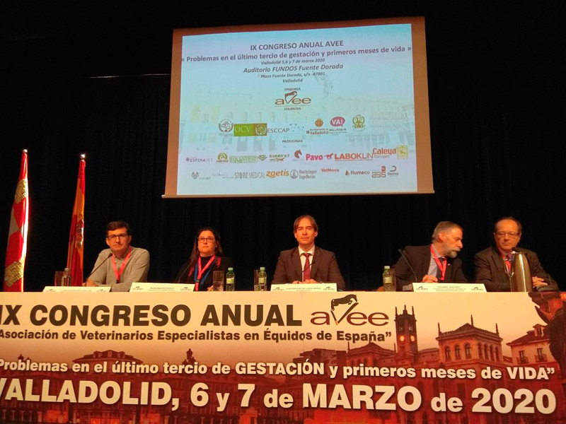 Congreso AVEE – 5, 6, 7 de Marzo 2020, Valladolid – IX Congreso Anual