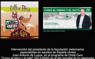 Onda Cero entrevista al presidente de la AVEE en la celebración del Día Mundial de la Veterinaria.  25-4-2020