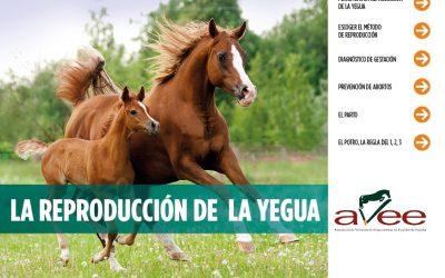 La AVEE publica un tríptico sobre la reproducción de la yegua