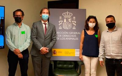 AVEE se reúne con la Dirección General de Derechos de los Animales